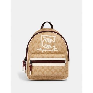 COACH Handbag 138