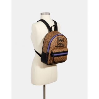 COACH Handbag 206