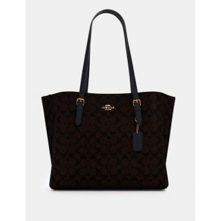 COACH Handbag 172