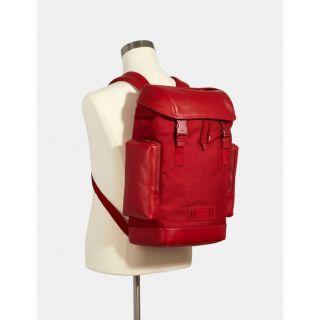 COACH Handbag 185