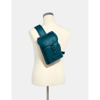 COACH Handbag 51