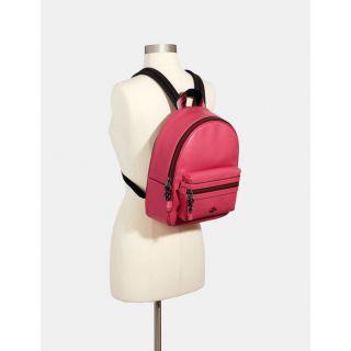 COACH Handbag 257