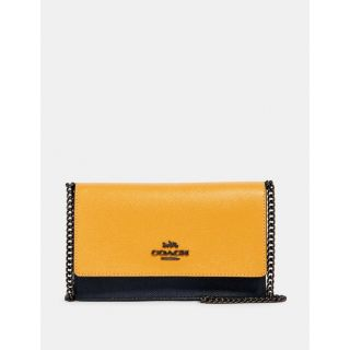 COACH Handbag 238