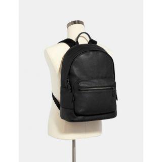 COACH Handbag 247