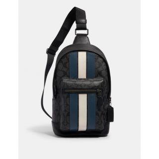 COACH Handbag 200