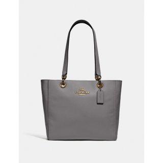 COACH Handbag 256