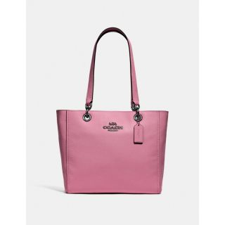 COACH Handbag 243