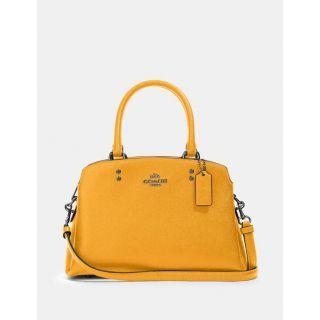 COACH Handbag 194