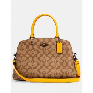 COACH Handbag 73