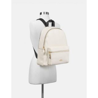 COACH Handbag 140