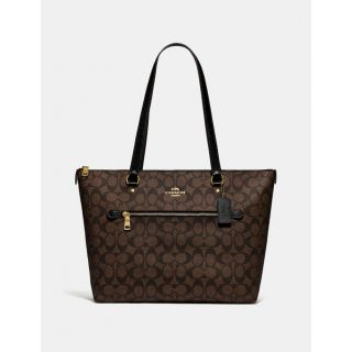 COACH Handbag 179
