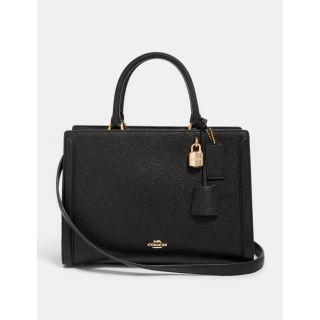 COACH Handbag 234